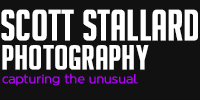 Scott Stallard Photography