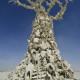 Burning Man 2012 The Art