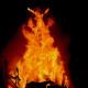 Burning Man 2011 The Burn
