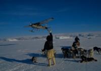 DROP OFF IN ARCTIC 1998